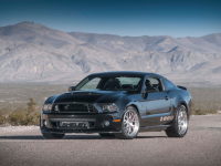 New York 2013 : Shelby 1000